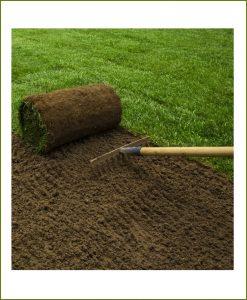Lawn Grass Installation