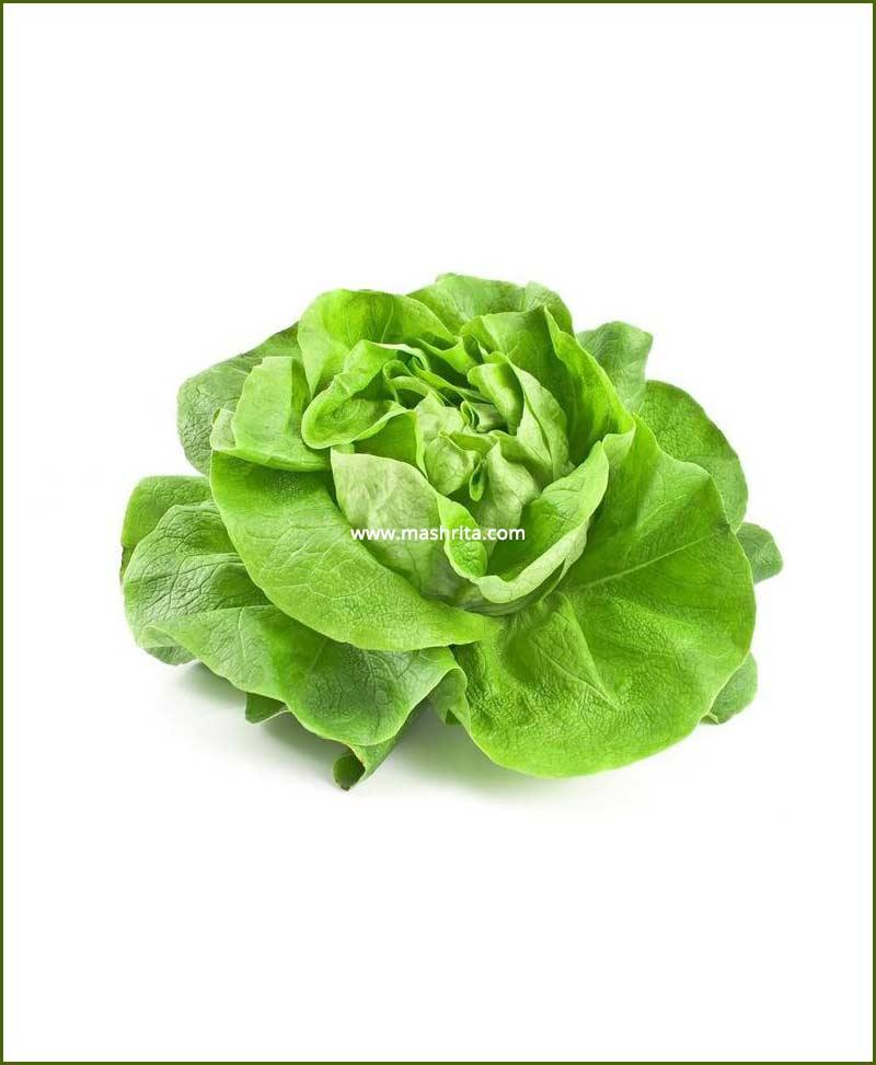 Lettuce Seeds (Ice Berg Salista)