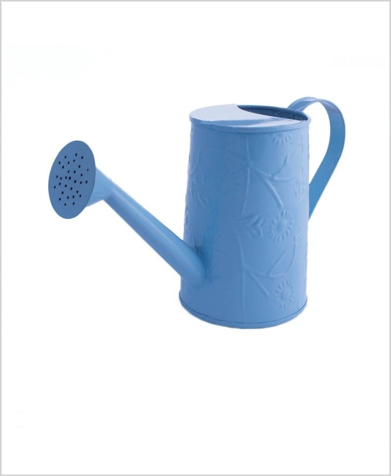 Metal Watering Can 1000ml Blue