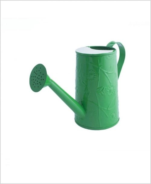 Metal Watering Can 1000ml Green