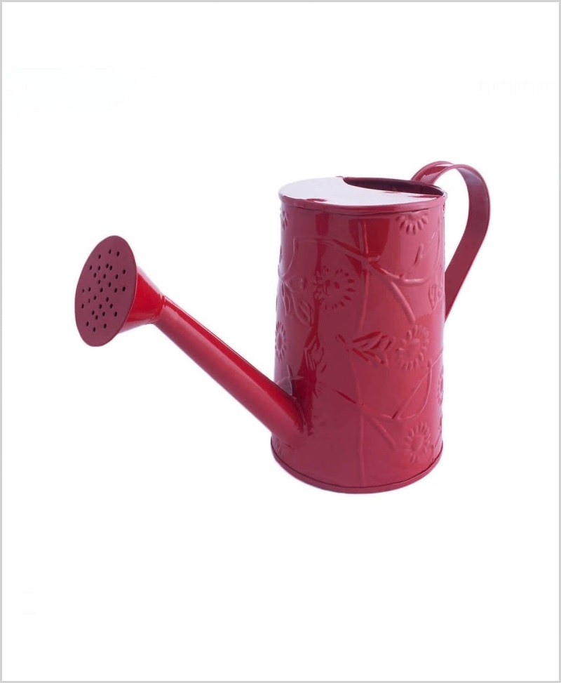 Metal Watering Can 1000ml Red