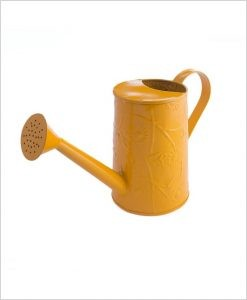 Metal Watering Can 1000ml Yellow
