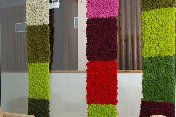 Moss wall colors