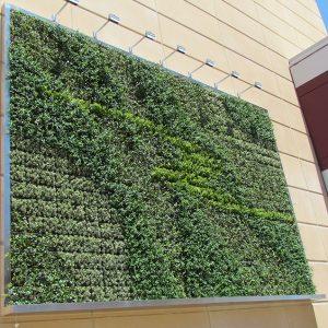 PP Pots Green Wall