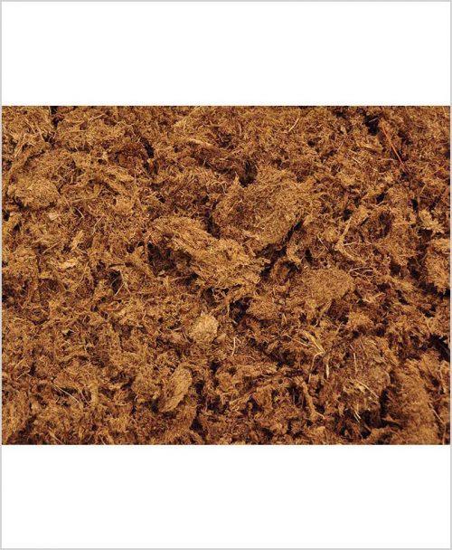 Peat Moss (500 Gram)