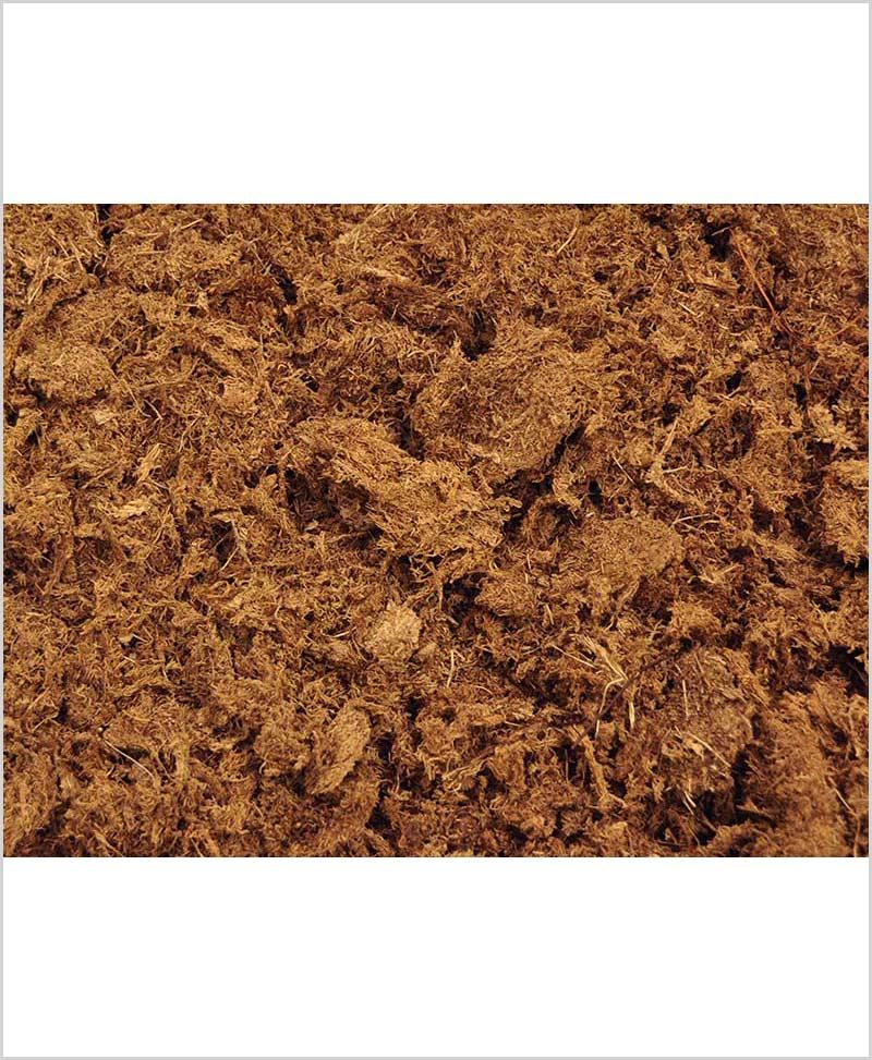 Peat Moss (250 Gram)