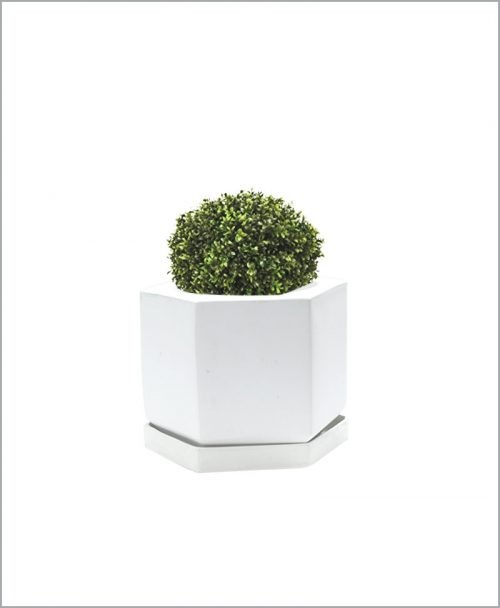 Table Top Fiber Planter 6 inch - Pentagon