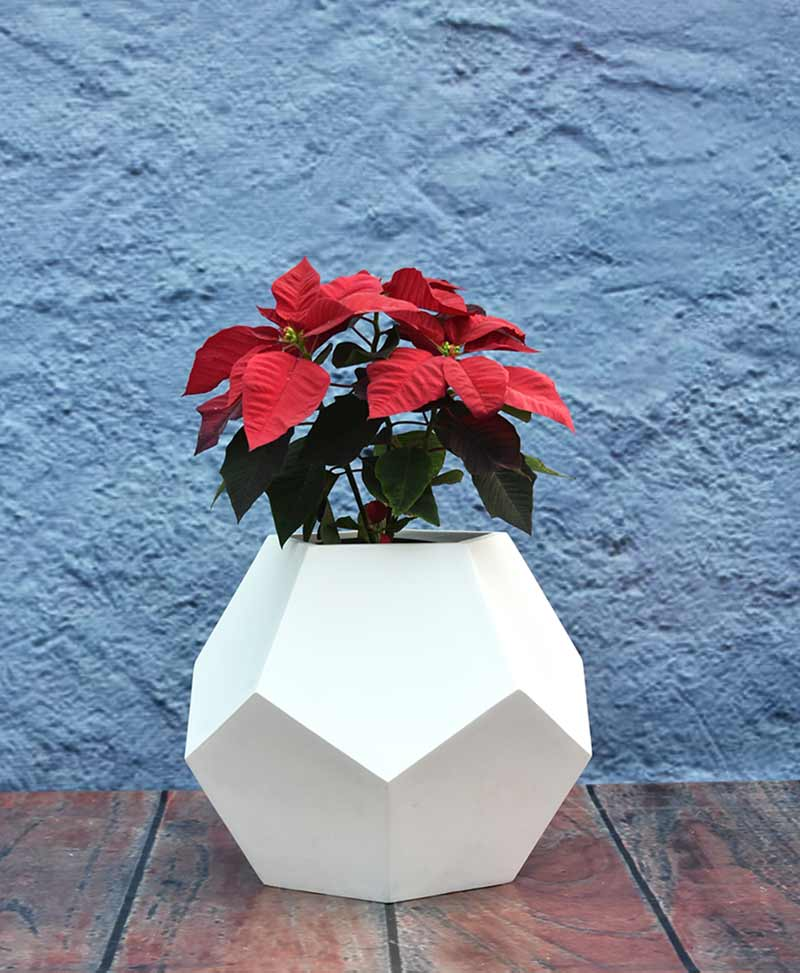Geometric Shape Pentagon Planter 12 inch