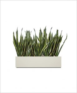 Rectangular Fiber Box Tray Sleek Planter 24 inch