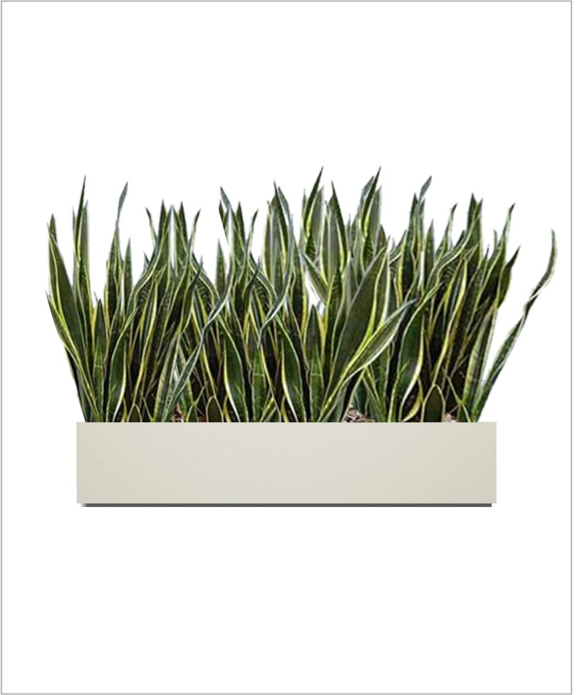 Rectangular Fiber Box Tray Sleek Planter 30 inch