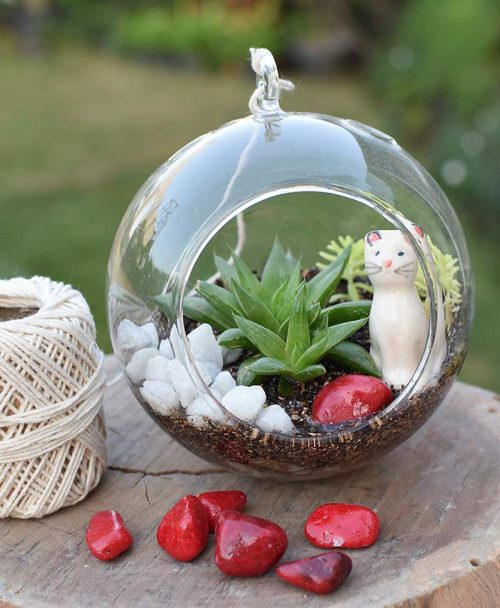 Hanging Sun Shape Without Base Type Terrarium Bowl with Cat
