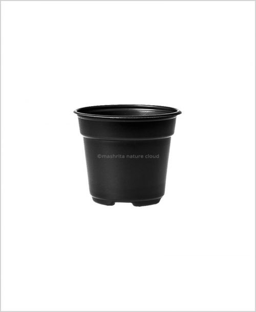Buy Plastic 6 inch Round Garden Pot (Black Color)
