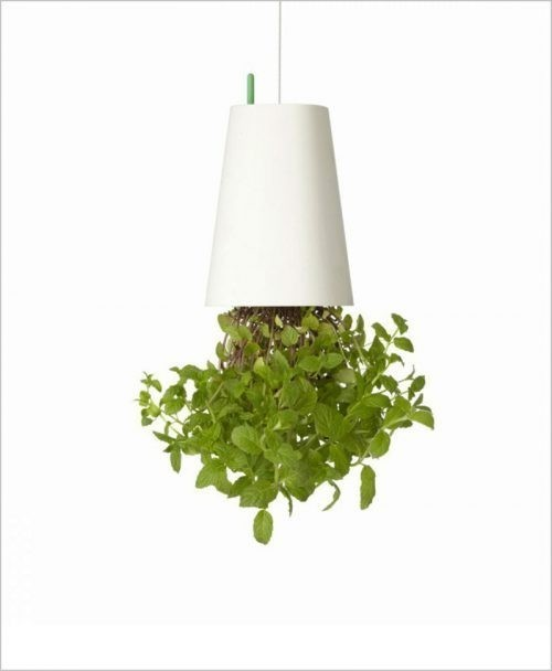 Buy Sky Planter (Inverted Planter - Upside Down Planter) - White Color