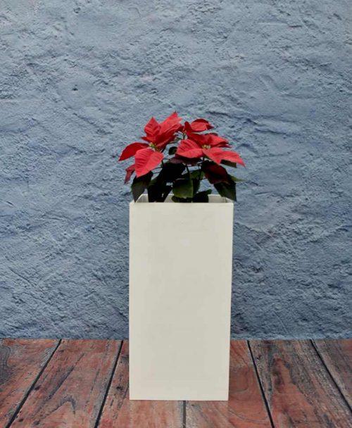 Squarish Planter 30 inch