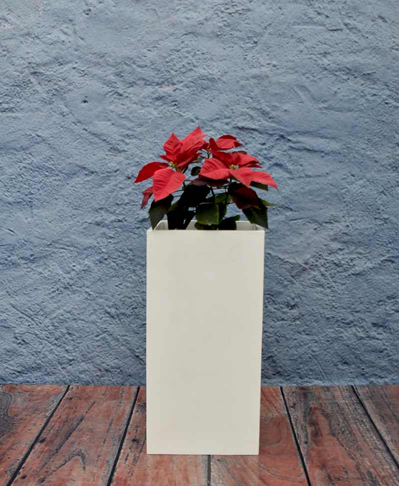 Squarish Planter 30 inch