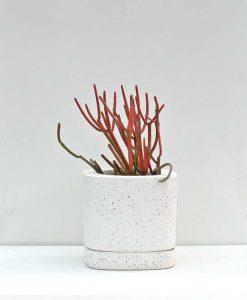 Table Top Fiber Planter Squarish 6 inch Concrete Texture
