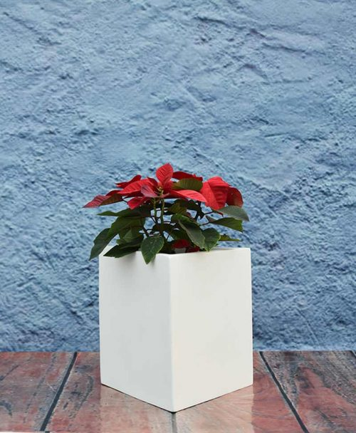 Geometric Shape Triangle Planter 12 inch