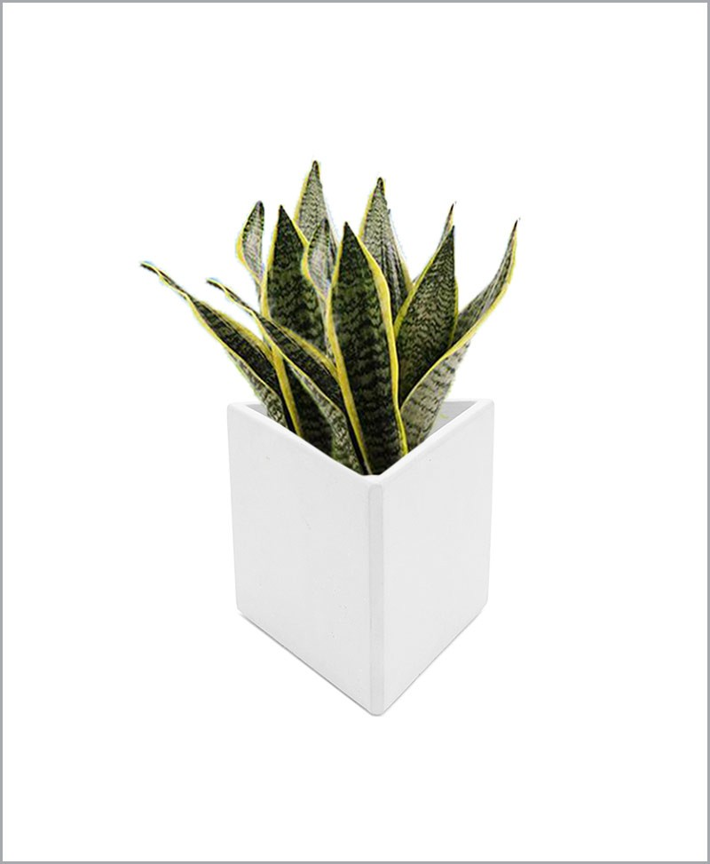 Decorative Fiber Planter 12 inch Geometric Shape Triangle