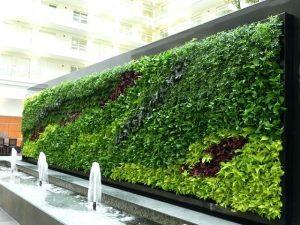 Vertical Garden Project 1