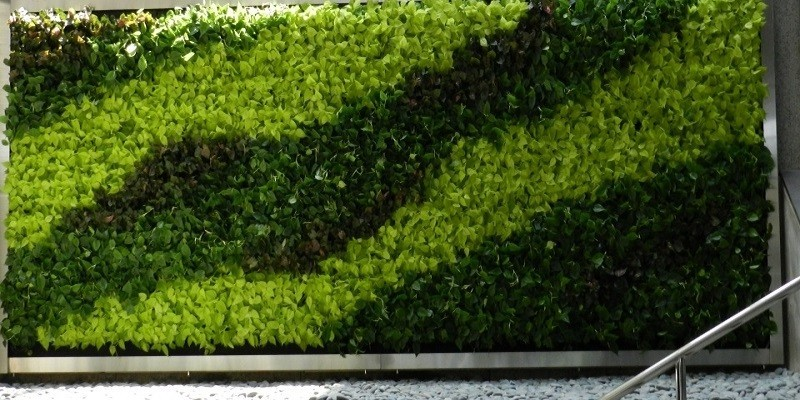 Vertical Garden Project 4
