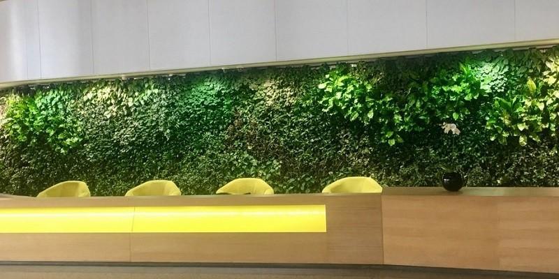 Vertical Garden Projects