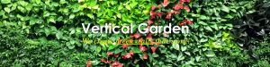 Vertical Garden Services Delhi, Gurgaon, Noida, All over India