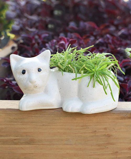 Ceramic Kids Cat Planter White 4 inch