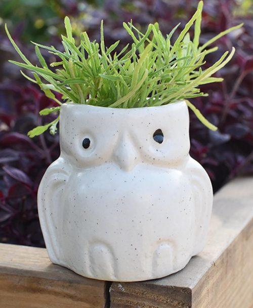 Ceramic Kids Owl Planter White 4 inch